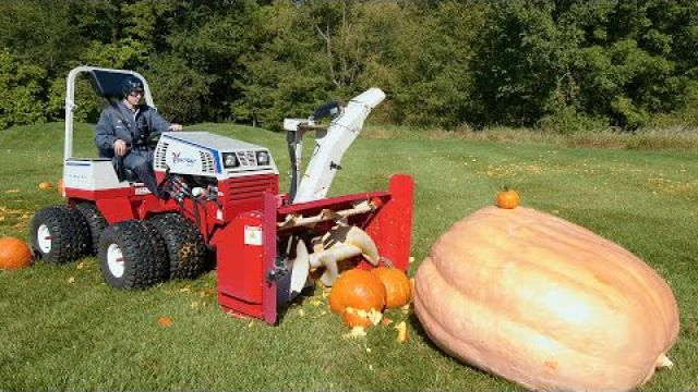 Giant Pumpkin vs Tractor